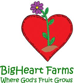 bigheartforms